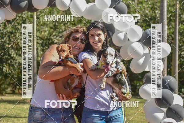 Buy your photos at this event 5º Encontro Oficial de Dachshunds e Concurso de Fantasias do Clube dos Salsichanos de Ribeirão Preto/SP on Fotop