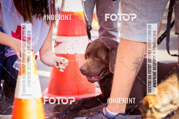 Buy your photos at this event Fire Run  Corrida do Corpo de Bombeiros Petrópolis on Fotop