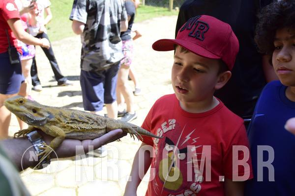 Compre suas fotos do eventoNR Clássico - 08 a 10/09/19 on Fotop