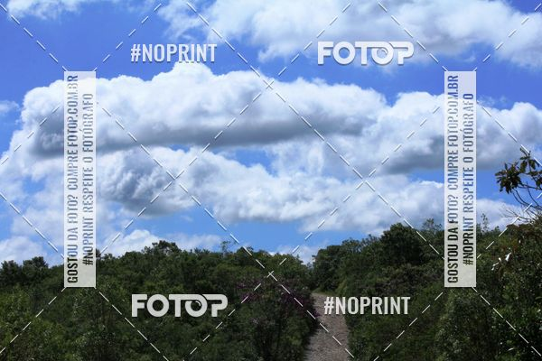 Buy your photos at this event CarnaMapa 2020 on Fotop