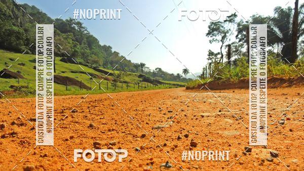 Buy your photos at this event PAPEL DE PAREDE NATUREZA - Foto Solidária on Fotop