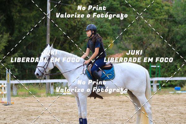 Buy your photos at this event Curso de Férias Centro Hípico APM (31/7 e 01/08) on Fotop