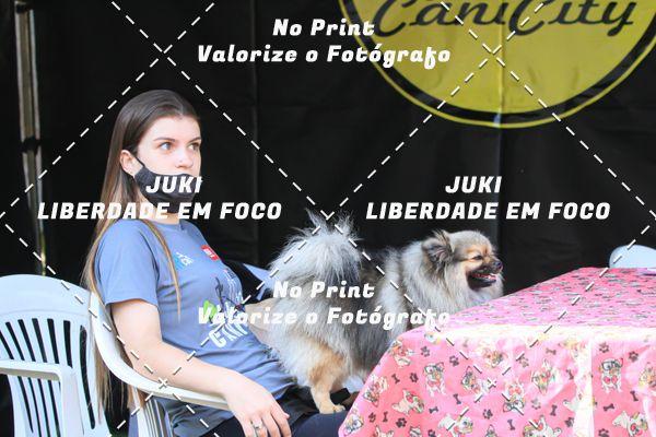 Buy your photos at this event 2º Simulado de Canicross Chácara Ribeiro on Fotop