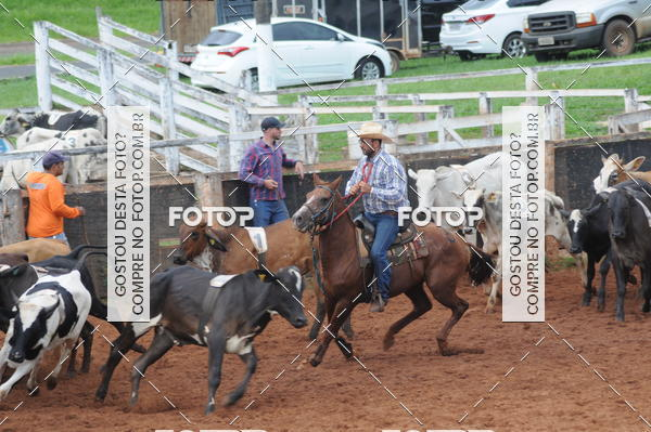 Buy your photos at this event TEAM PENNING CAMARU  on Fotop