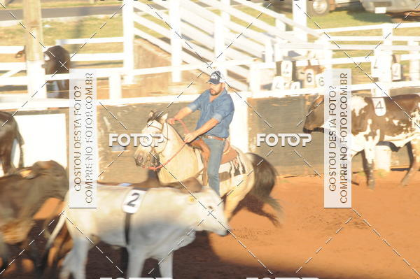 Buy your photos at this event TEAM PENNING  GRANDE FINAL CAMARU on Fotop