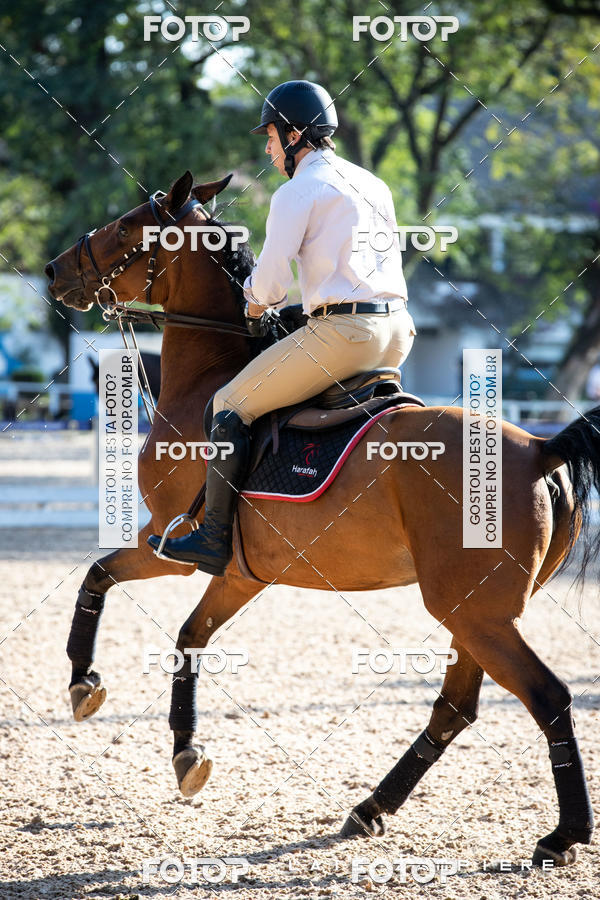 Buy your photos at this event Hipismo / Hípica Santo Amaro on Fotop