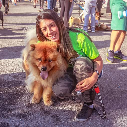 7ª Cãorrida do Shopping AricanduvaEn Fotop