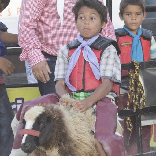 Festival Sertanejo de Jandira - Rodeio em Carneiro on Fotop