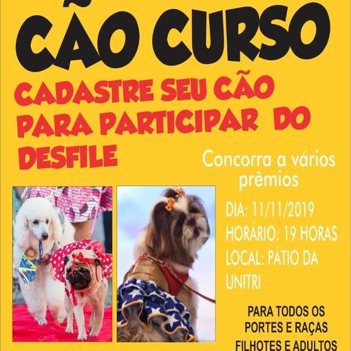 Cão Curso Desfile de Cães on Fotop