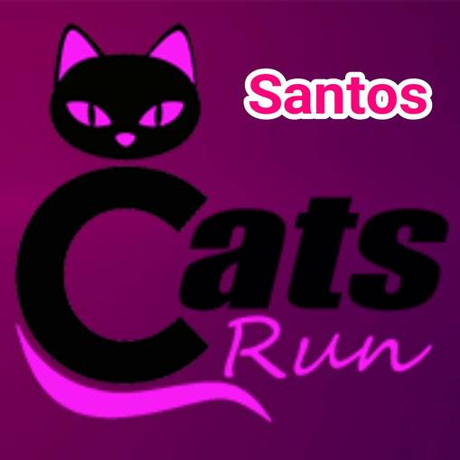 CATS RUN - SANTOS  on Fotop