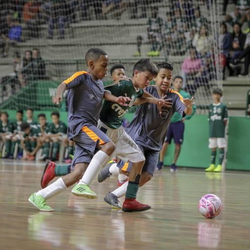Palmeiras x Tabuca Juniorssur Fotop