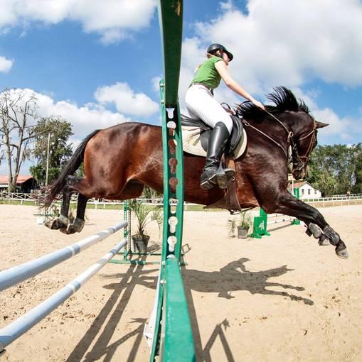 Prova Interna Escola de Equitação Albar - Tao Equestre.  Busque sua foto usando número de categoria (60, 80 ou 90) + ordem de entrada, ex: 602, 801 e 902. on Fotop