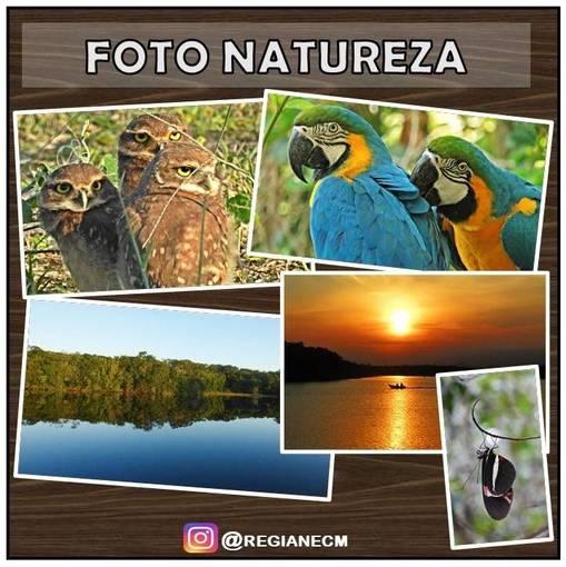 FOTOS - Natureza - 01 on Fotop