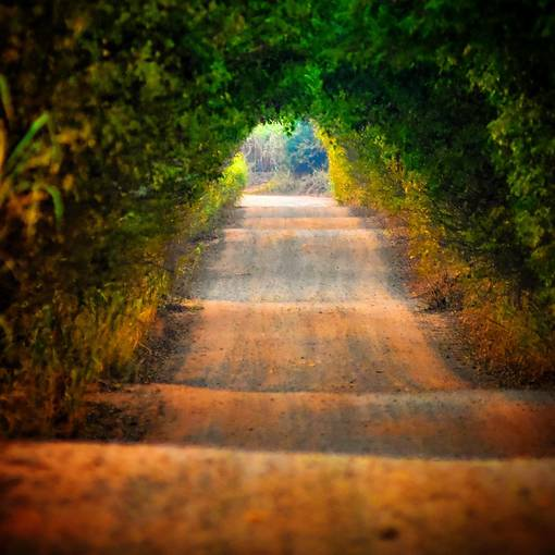 Treino Estrada do Jorjão Leme on Fotop