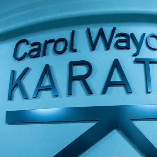 Carol Wayow Karate - Treino com Super-heróis on Fotop