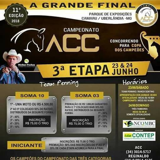 TEAM PENNING  GRANDE FINAL CAMARUEn Fotos